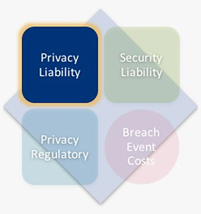cyber insurance basics privacy liability coverage